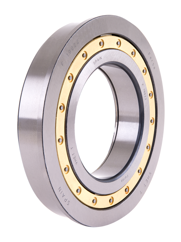 Cylindrical roller bearings (F 19130)
