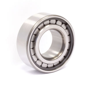 Cylindrical roller bearings (F 19142)