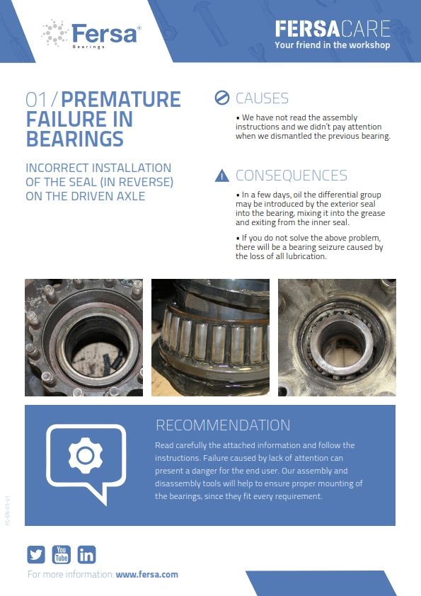 Informative Capsules I: premature failure in bearings